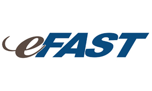 eFast Logo